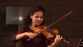 Schubert Sonatina no2 op137 D.385  in A minor