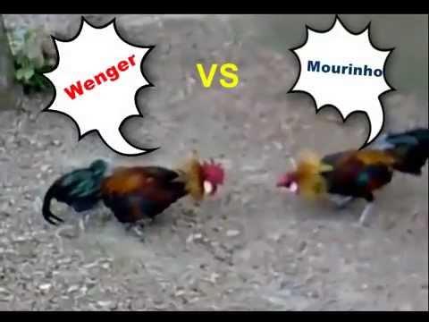 Arsene Wenger VS Jose Mourinho FUNNY FIGHT