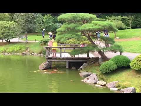 Seattle Japanese Garden 2