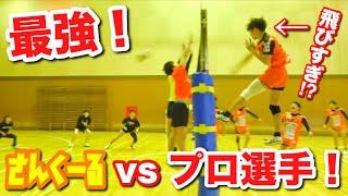 【バレーボール】プロ選手vsさんくーるのガチバトル!!