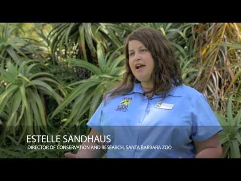 Urban Wildlife Conservation: Southern California