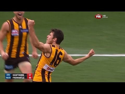 2013 AFL Grand Final - Hawthorn Vs Fremantle (AFL Live Commentary)