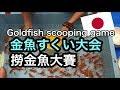 金魚すくい大会に参加して来ました@奈良郡山 参加撈金魚大賽Goldfish scooping game