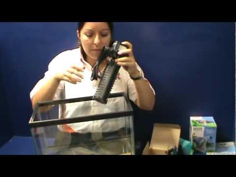 Cuidados de las mascotas tip kota sobre filtros para for Filtro para pecera