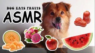 ASMR Dog Reviews Fruits - Queen Clappy ASMR #1