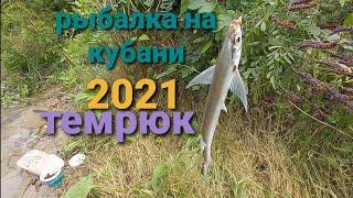 Темрюк рыбалка на реке Кубань
