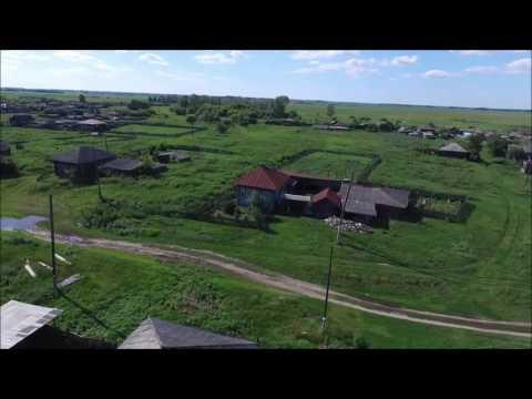 Деревня Портнягино Курганской области.