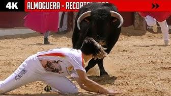 Imagen del video: MUJERES RECORTADORAS: Saltos, quiebros y cortes en Almoguera