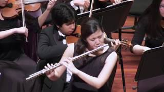 Reinecke Concerto for Flute in D Major, Op. 283 - SDYS 2017 Chamber Orchestra
