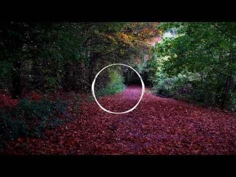 Cadmium - Ghost (feat. Eli Raain) BASS BOOST