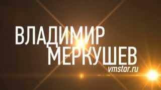 Тамада на свадьбу Москва Владимир Меркушев