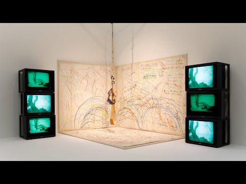 Ausstellungsfilm: Carolee Schneemann. Kinetische Malerei