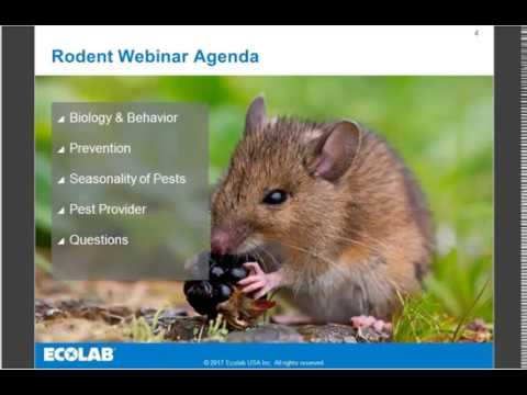 Ecolab Rodent Webinar Recording - October 24, 2017