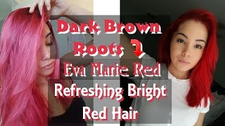 eva marie red hair how to dye dark roots red refresh bright red hair