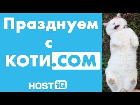 Празднуем с коти.COM | HOSTiQ