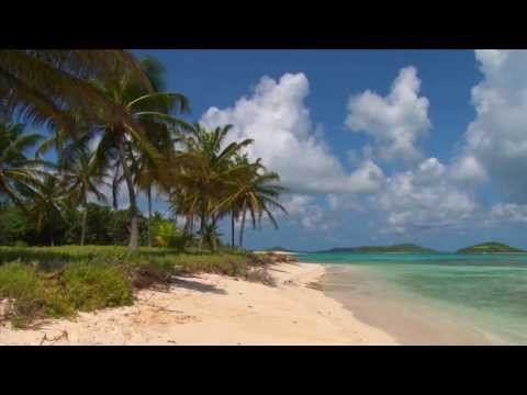 Beautiful Tobago Cays Beach Scene, filmed in the Grenadines, Caribbean!