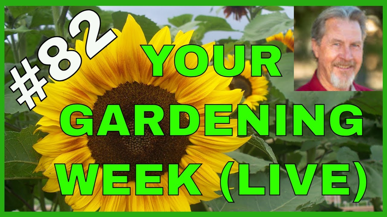 Download Is Fertilizer Really Necessary? (Q&A)