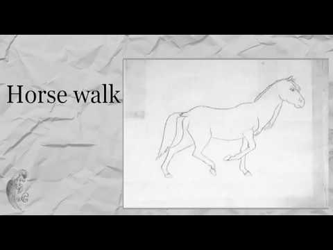 Вопрос: Как называется самая медленная походка лошади?