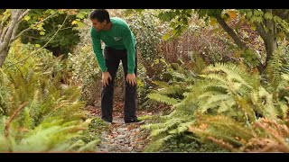Green Solutions to Stormwater Runoff