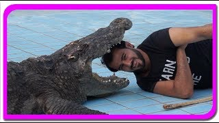 New Crocodile Show Video   Anabella Show