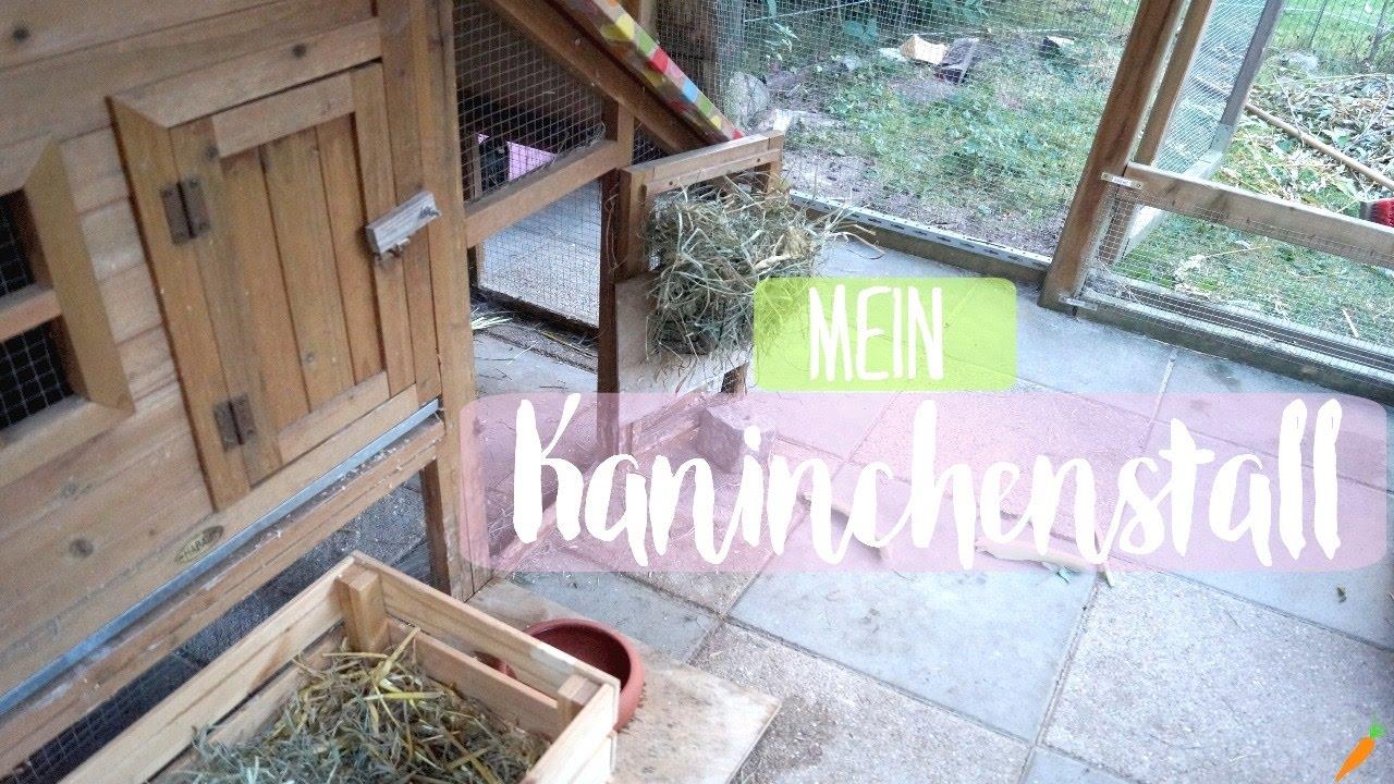 artgerechter Kaninchenstall  ich zeige euch mein Kaninchengehege/Cagetour