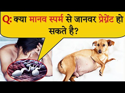 15 Most brilliant Gk questions with answers | Part 37 | FUNNY IAS Interview | Gk | Hindi Paheli from YouTube · Duration:  3 minutes 54 seconds