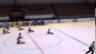 Kings České Budějovice vs HC Sparta Praha sledge hokej