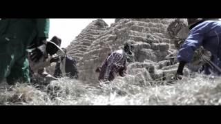 Abbush Zallaqaa - Amootee አሞቴ (Oromiffa)