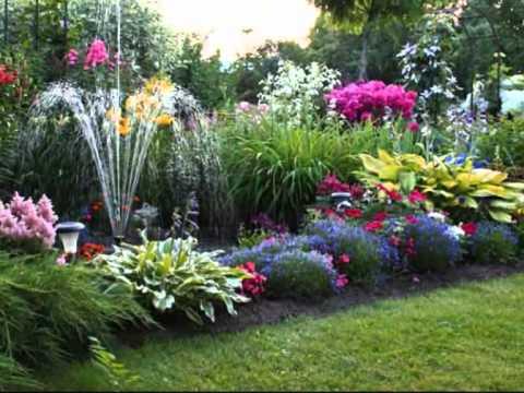 видео: Прекрасный сад, который мы создали сами.