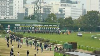 【HD】シャドウゲイト号、久々の勝利(第58回中京記念GⅢ・2010年)