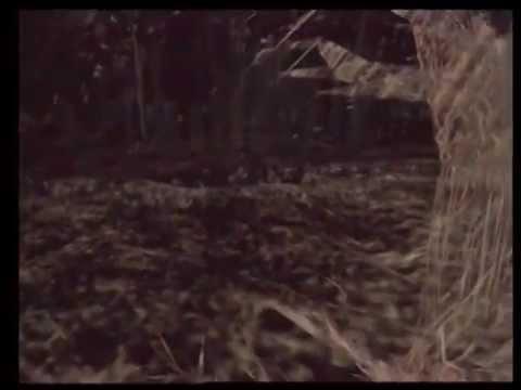 Osmose (1995) - Mini-documentary - 33 min.