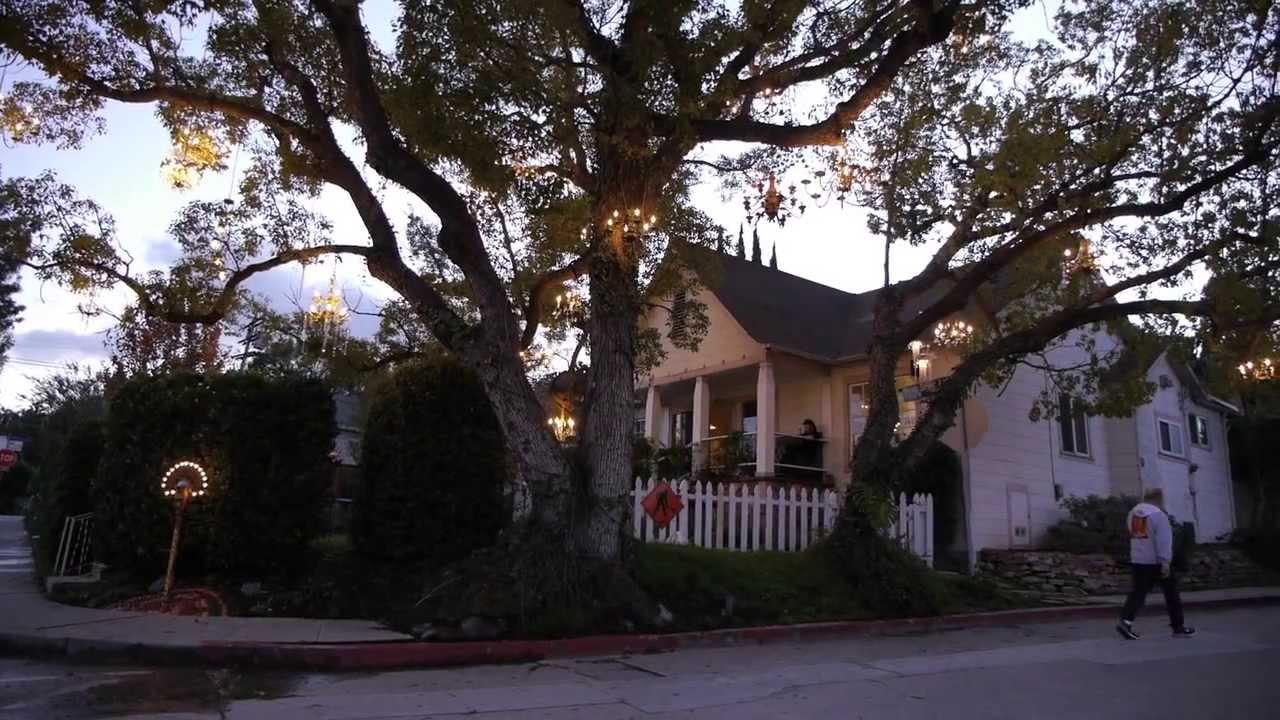 Chandelier Tree \\\\ Silverlake CA - YouTube