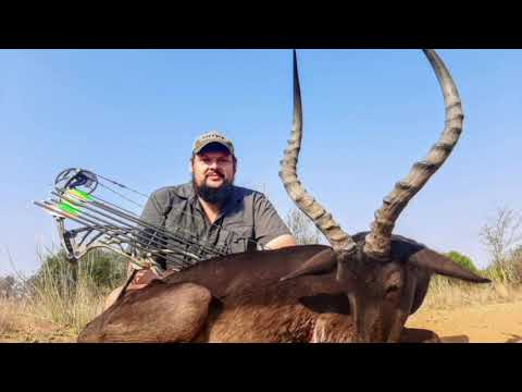 Bowhunting 12 animals in South Africa