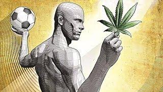 Marihuana  en la salud y actividad física - Paidotribas