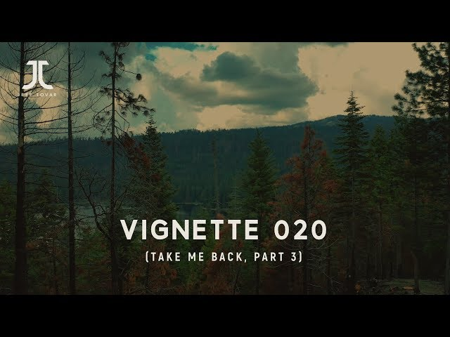 Vignette 20 (Take Me Back, part 3)