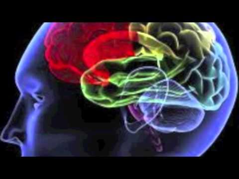 Man Brain - Belik boom