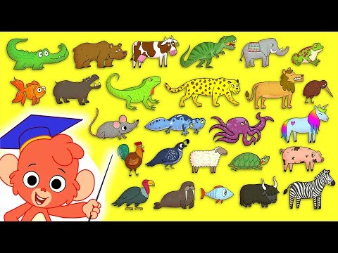 Animal ABC | Learn the alphabet with 26 animals for children | Alphabet Zoo Baby ABCD