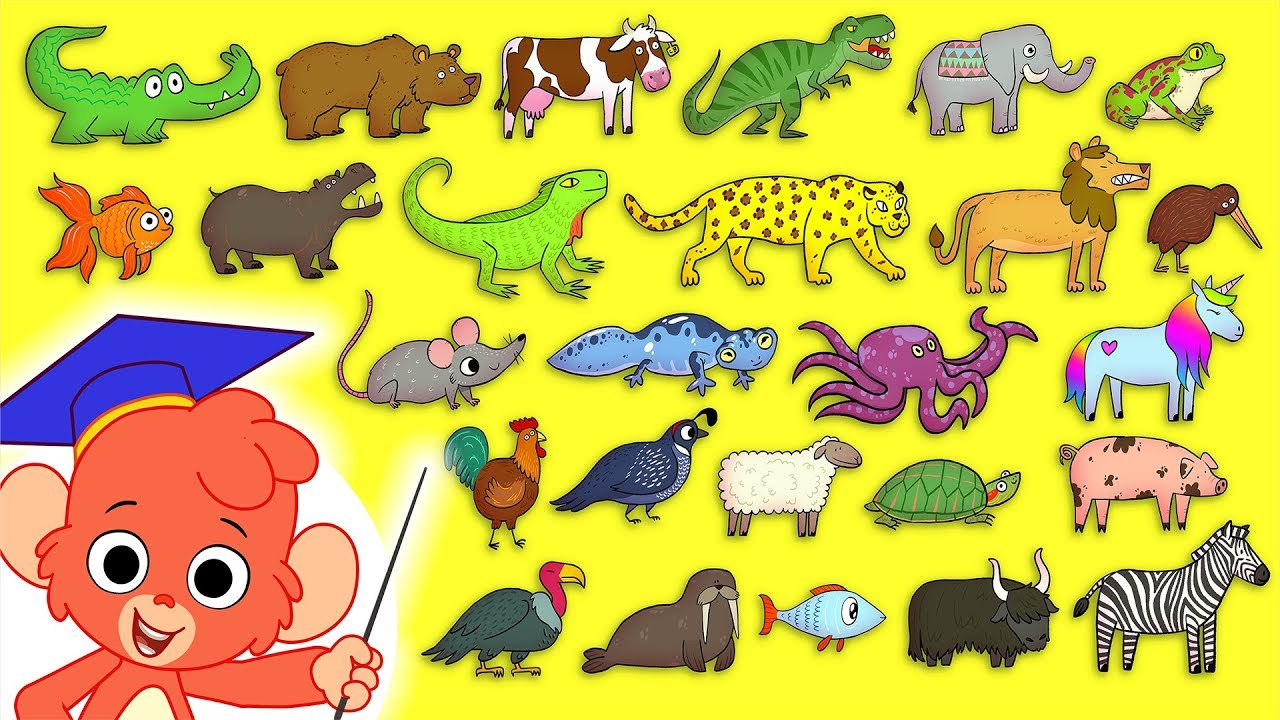 Animal ABC with Number Zoo | Learn the Alphabet With ...