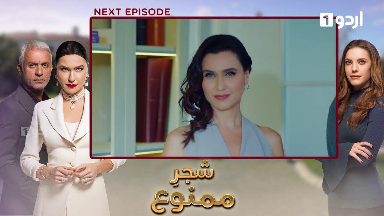 Shajar-e-Mamnu | Episode 41 | Teaser | Turkish Drama  | Forbidden Fruit | Urdu Dubbing | 03 Feb 2021