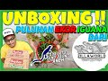 Unboxing Calon Iguana Indukan Dari Zillaworld Dapet Bonus  Mp3 - Mp4 Download