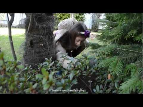 Camilla ThyThy chôn cất chú chim nhỏ sau vườn nhà