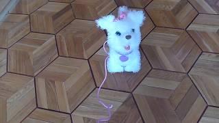Интерактивный ходячий Щенок ,Fur real friends, GoGo my walking pup, Hasbro Europe