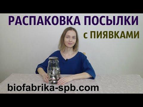Заказ пиявок на Biofabrika-spb.com. Открываю посылку с медицинскими пиявками.