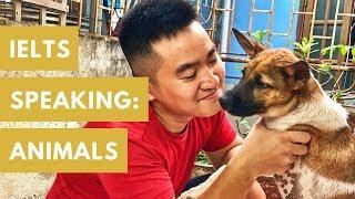I ADOPTED A DOG!!! :D IELTS SPEAKING: Nói về động vật