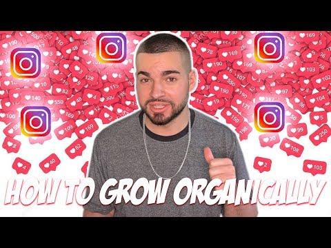 Grow Your Instagram Organically 2019 (FREE)