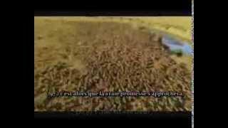 Sourate Al Anbiya { 95 - 106 } | Salman Utaybi - Magnifique récitation |Fr