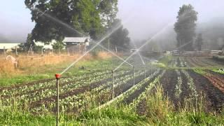 Pesticides in Organic Farming