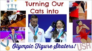 Turning Our Cats Into Olympic Figure Skaters!!! (Adam Rippon + Mirai Nagasu)