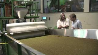 Carolina Traveler:  Charleston Tea Plantation HD