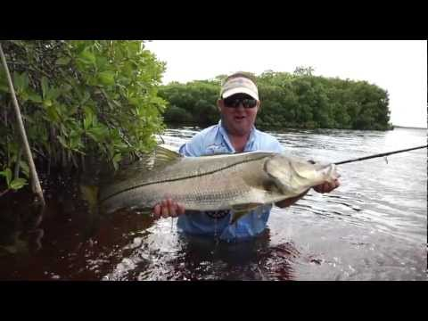 Fly Fishing Film Tour - Fly Fishing Mexico Inshore